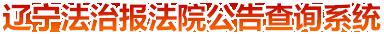 辽宁法制报法院公告查询系统